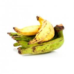 Plátano (Unidad)